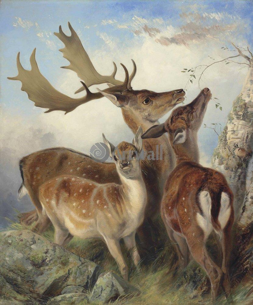 Животные, картина Ричард Энсдэлл «Олени»Животные<br>Репродукция на холсте или бумаге. Любого нужного вам размера. В раме или без. Подвес в комплекте. Трехслойная надежная упаковка. Доставим в любую точку России. Вам осталось только повесить картину на стену!<br>
