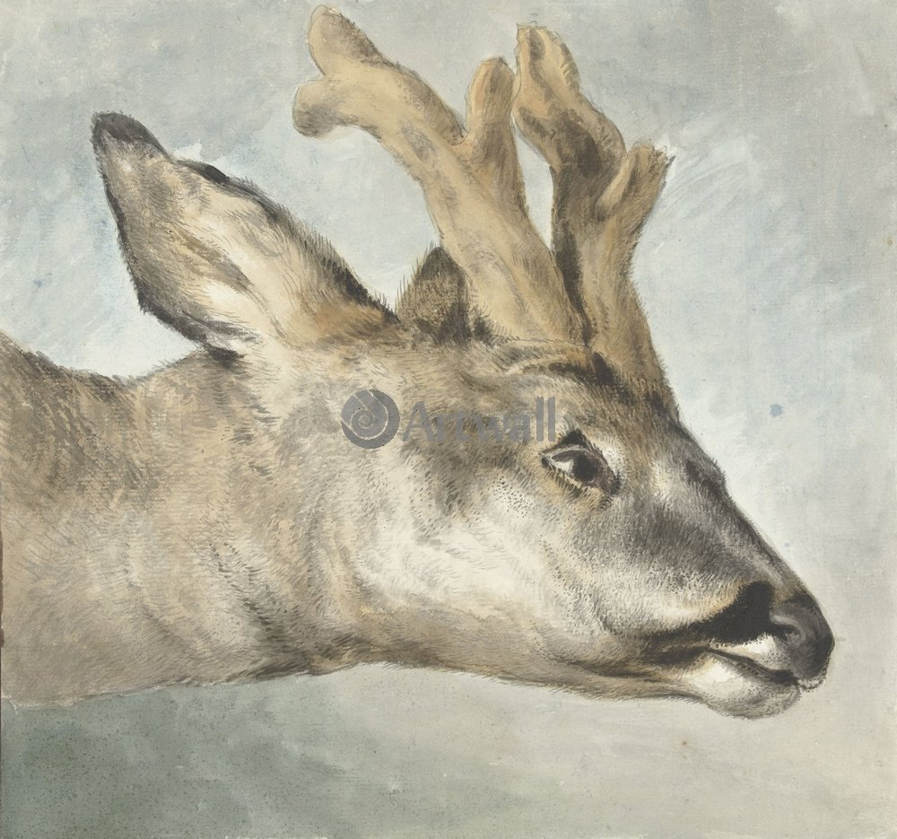 Животные, картина Вайбрандт Хендрик «Олень»Животные<br>Репродукция на холсте или бумаге. Любого нужного вам размера. В раме или без. Подвес в комплекте. Трехслойная надежная упаковка. Доставим в любую точку России. Вам осталось только повесить картину на стену!<br>
