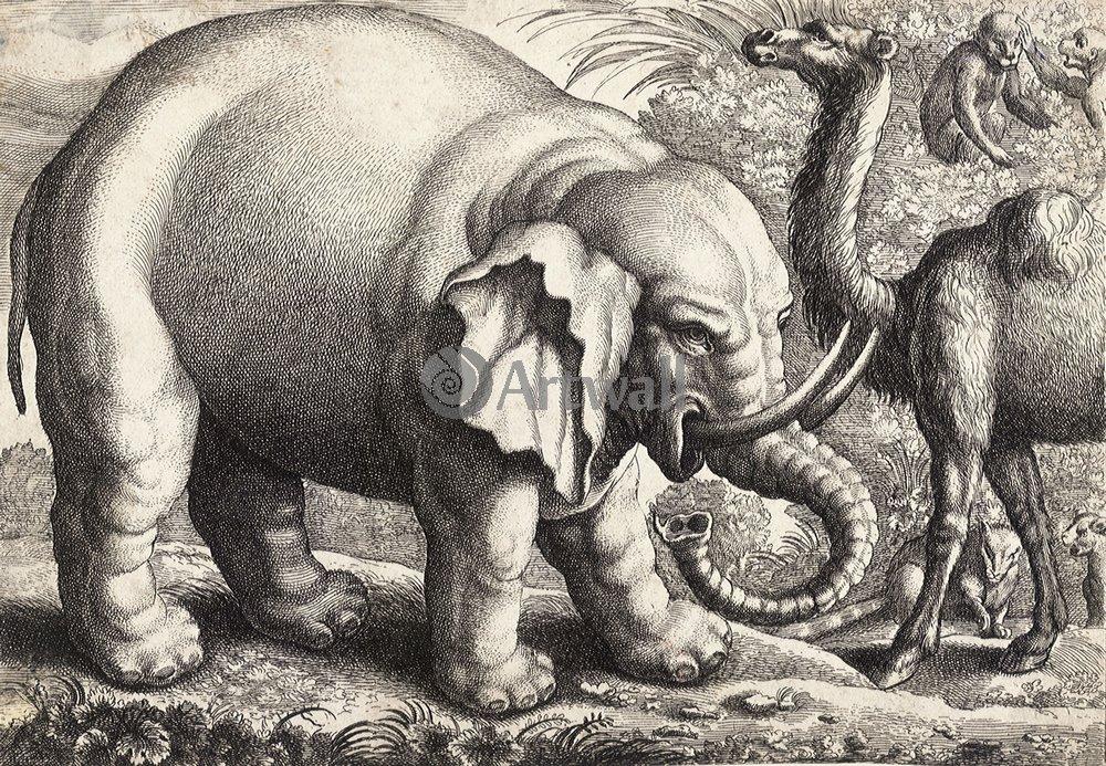 Животные, картина Вацлав Холлар «Слон»Животные<br>Репродукция на холсте или бумаге. Любого нужного вам размера. В раме или без. Подвес в комплекте. Трехслойная надежная упаковка. Доставим в любую точку России. Вам осталось только повесить картину на стену!<br>
