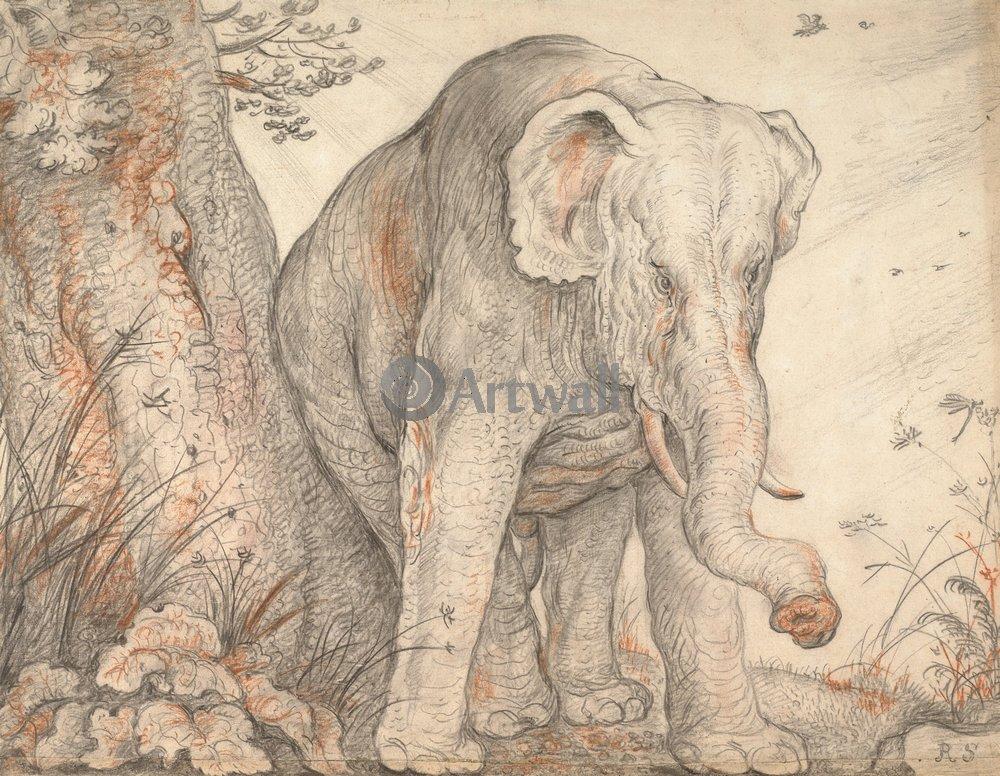 Животные, картина Рулант Саверей «Слон»Животные<br>Репродукция на холсте или бумаге. Любого нужного вам размера. В раме или без. Подвес в комплекте. Трехслойная надежная упаковка. Доставим в любую точку России. Вам осталось только повесить картину на стену!<br>