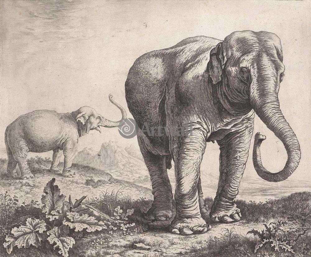 Животные, картина Герман Сафтлевен «Слоны»Животные<br>Репродукция на холсте или бумаге. Любого нужного вам размера. В раме или без. Подвес в комплекте. Трехслойная надежная упаковка. Доставим в любую точку России. Вам осталось только повесить картину на стену!<br>