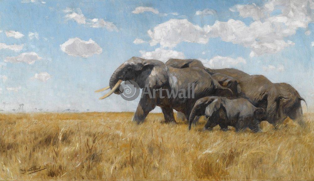 Животные, картина Фридрих Вильгельм Кунерт «Слоны»Животные<br>Репродукция на холсте или бумаге. Любого нужного вам размера. В раме или без. Подвес в комплекте. Трехслойная надежная упаковка. Доставим в любую точку России. Вам осталось только повесить картину на стену!<br>