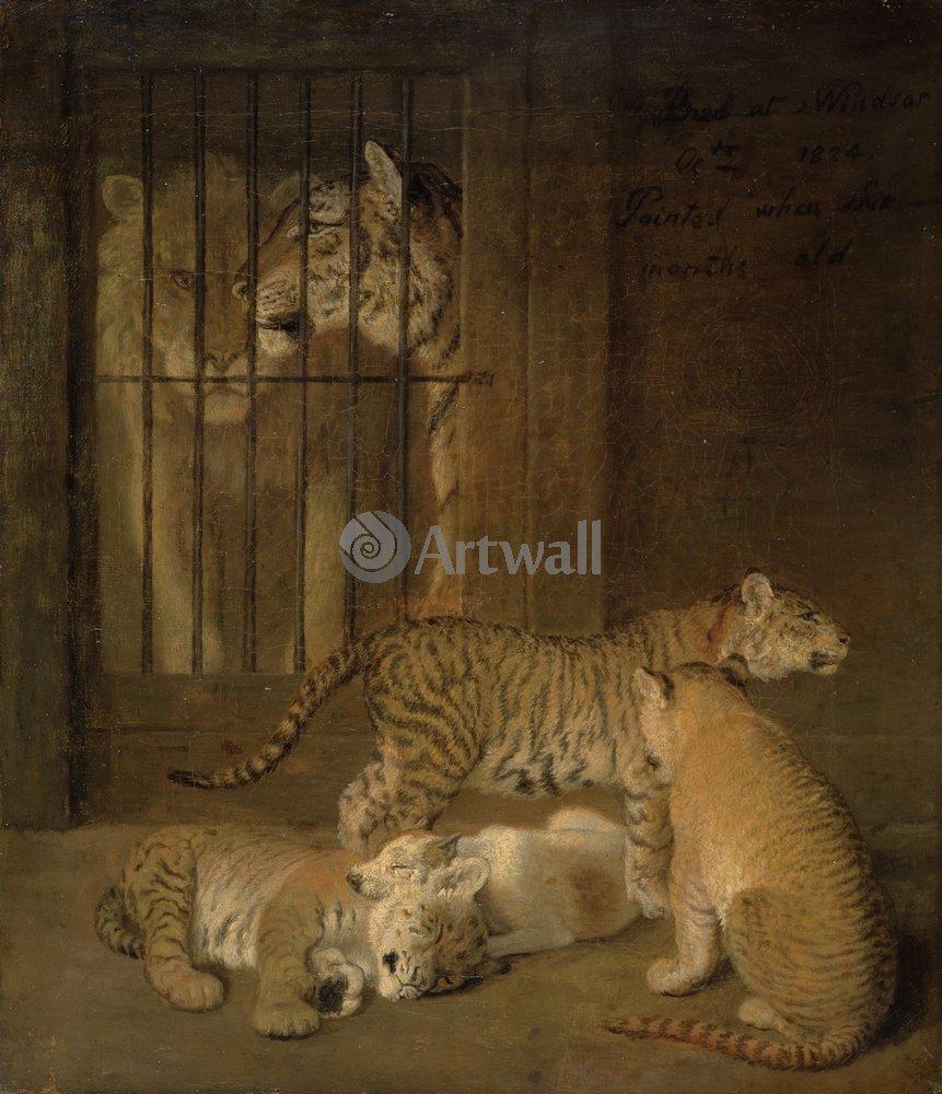 Животные, картина Жак-Лоран Агас «Тигры»Животные<br>Репродукция на холсте или бумаге. Любого нужного вам размера. В раме или без. Подвес в комплекте. Трехслойная надежная упаковка. Доставим в любую точку России. Вам осталось только повесить картину на стену!<br>