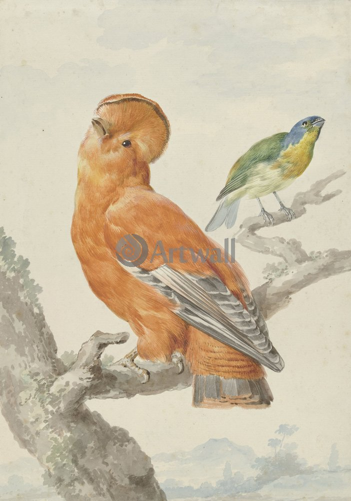 Птицы, картина Аерт Шуман «Две птицы»Птицы<br>Репродукция на холсте или бумаге. Любого нужного вам размера. В раме или без. Подвес в комплекте. Трехслойная надежная упаковка. Доставим в любую точку России. Вам осталось только повесить картину на стену!<br>