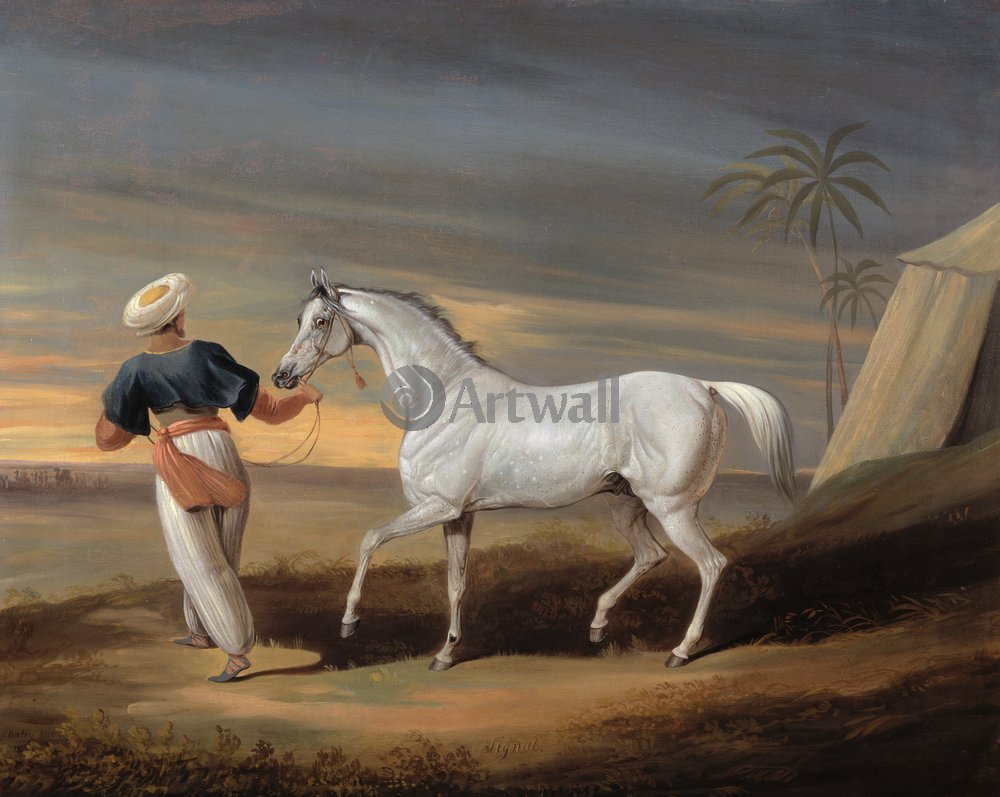 Лошади и всадники, картина Далби Дэвид «Сгнал, серый арабский конь и грум»Лошади и всадники<br>Репродукция на холсте или бумаге. Любого нужного вам размера. В раме или без. Подвес в комплекте. Трехслойная надежная упаковка. Доставим в любую точку России. Вам осталось только повесить картину на стену!<br>