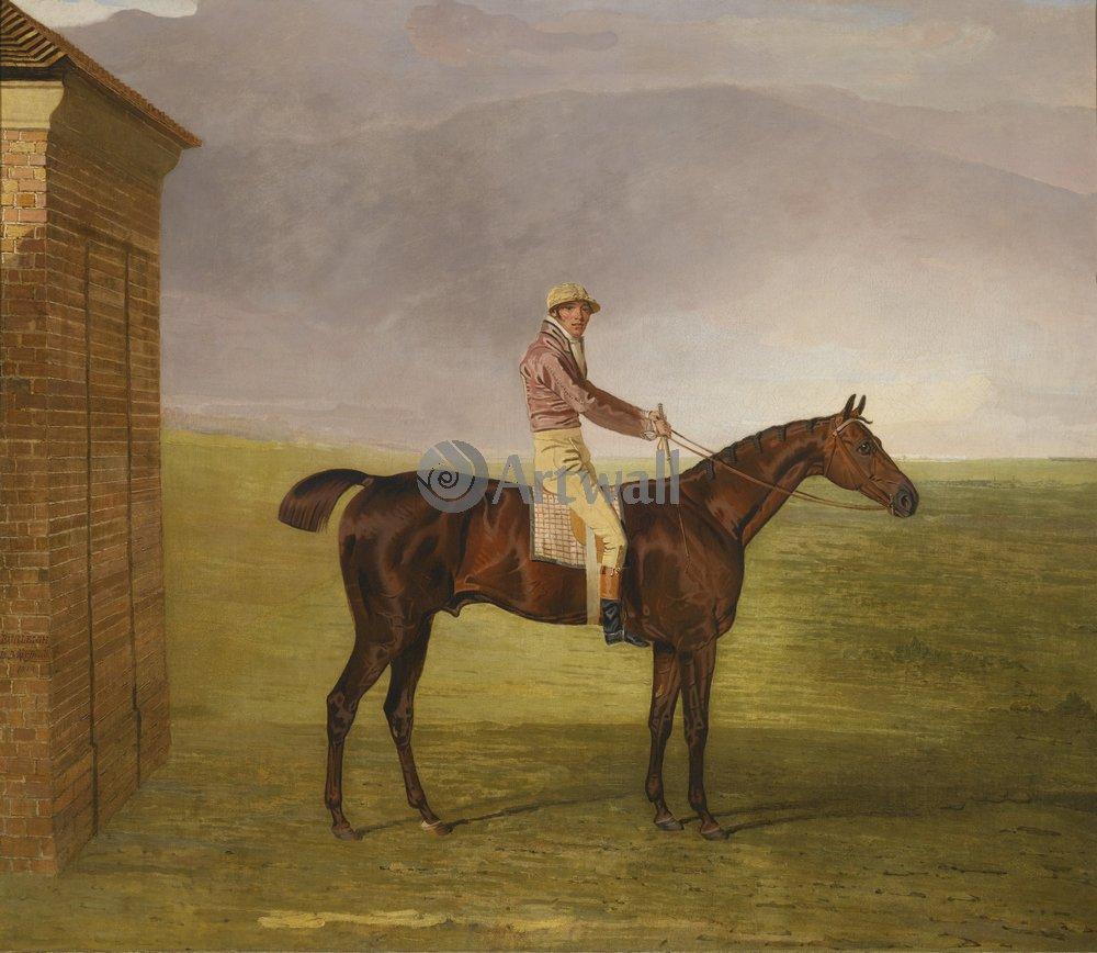 Лошади и всадники, картина Маршалл Бенджамин «Жокей на лошади»Лошади и всадники<br>Репродукция на холсте или бумаге. Любого нужного вам размера. В раме или без. Подвес в комплекте. Трехслойная надежная упаковка. Доставим в любую точку России. Вам осталось только повесить картину на стену!<br>