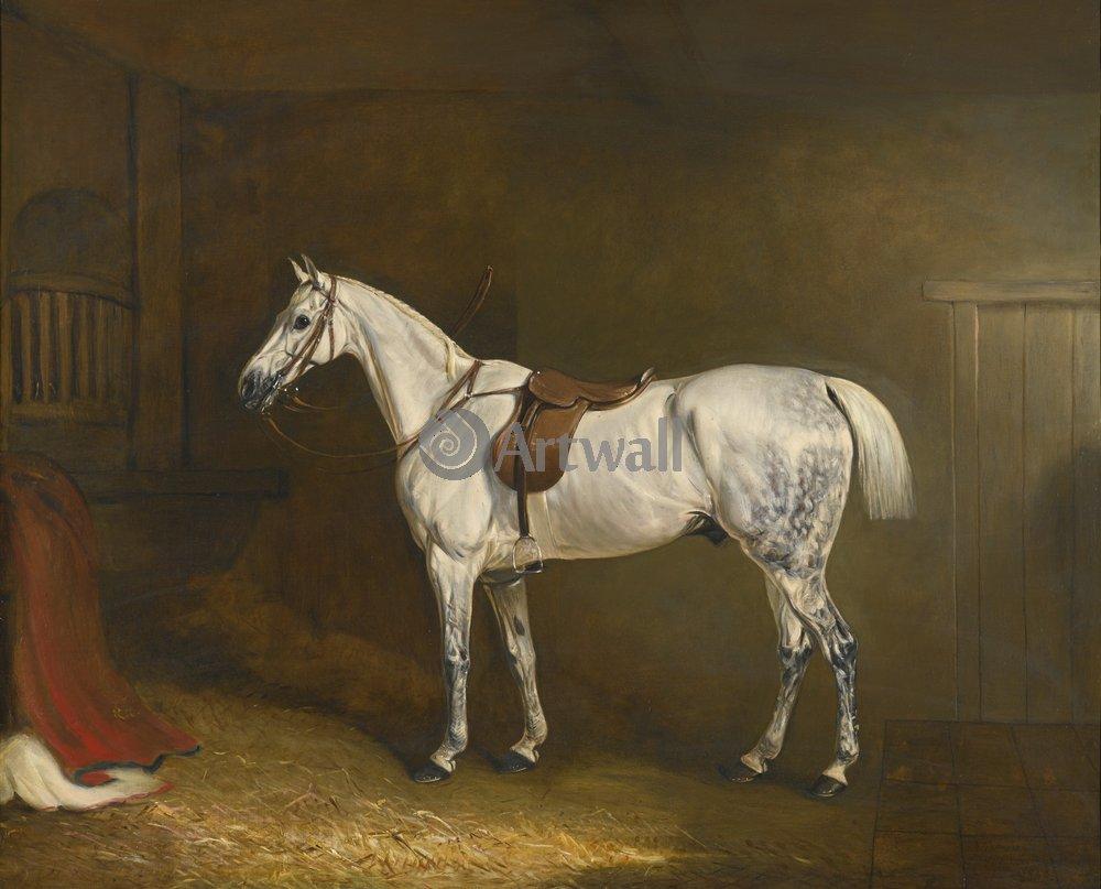 Лошади и всадники, картина Фернели Джон «Белая лошадь»Лошади и всадники<br>Репродукция на холсте или бумаге. Любого нужного вам размера. В раме или без. Подвес в комплекте. Трехслойная надежная упаковка. Доставим в любую точку России. Вам осталось только повесить картину на стену!<br>