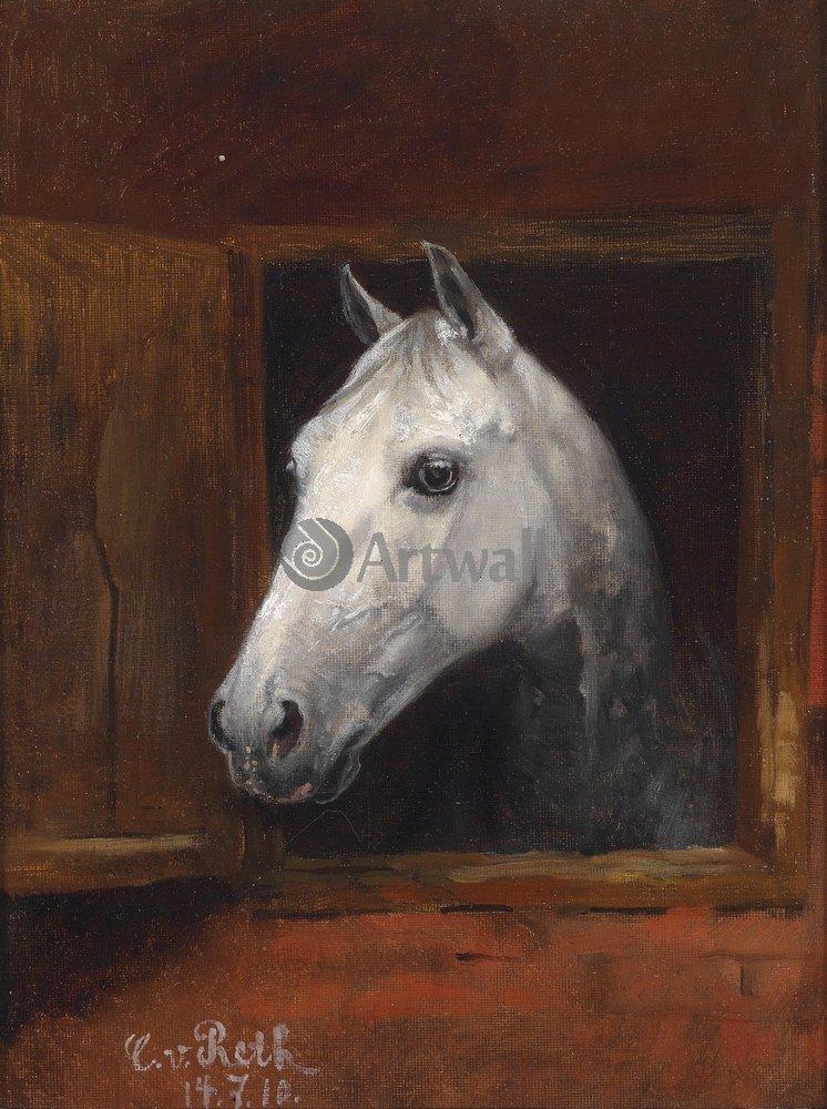 Лошади и всадники, картина Фон Рет Каспар «Голова лошади»Лошади и всадники<br>Репродукция на холсте или бумаге. Любого нужного вам размера. В раме или без. Подвес в комплекте. Трехслойная надежная упаковка. Доставим в любую точку России. Вам осталось только повесить картину на стену!<br>