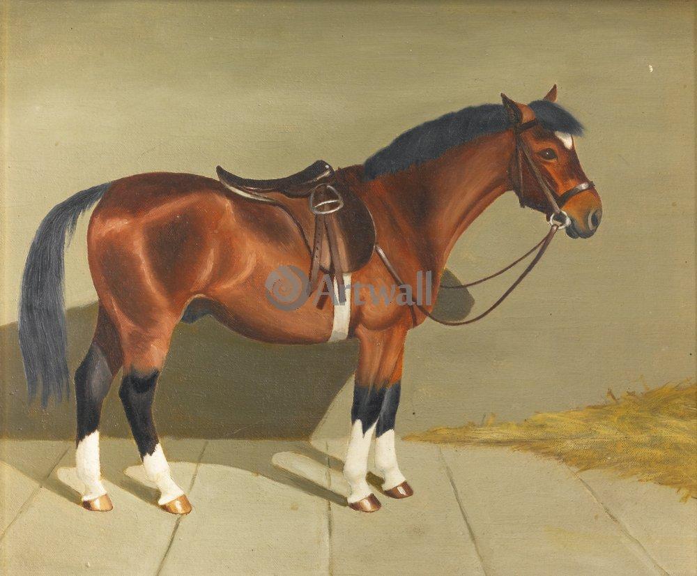Лошади и всадники, картина Хармсворт Анжела «Оседланная лошадь»Лошади и всадники<br>Репродукция на холсте или бумаге. Любого нужного вам размера. В раме или без. Подвес в комплекте. Трехслойная надежная упаковка. Доставим в любую точку России. Вам осталось только повесить картину на стену!<br>