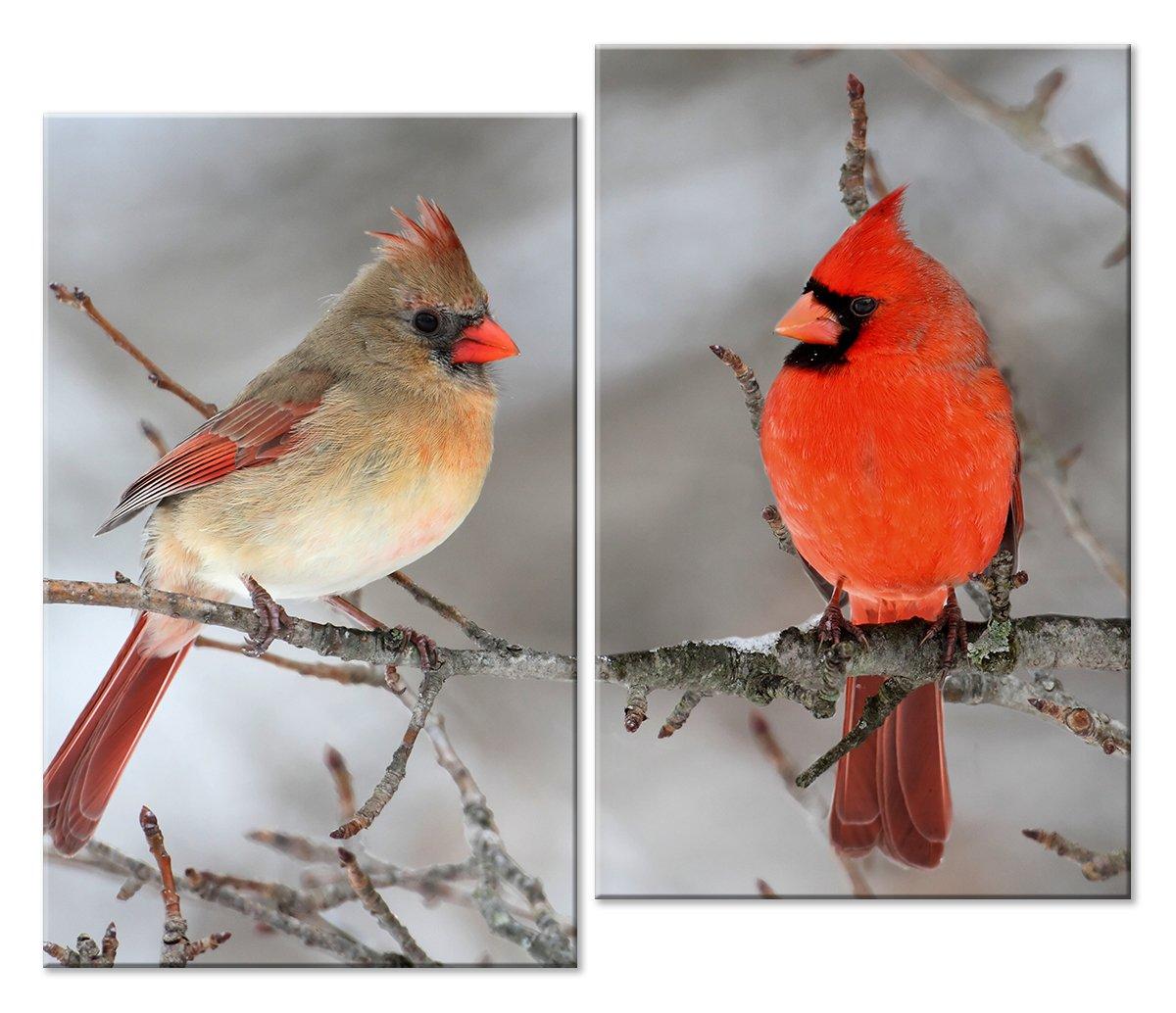 Модульная картина «Птички»Животные и птицы<br>Модульная картина на натуральном холсте и деревянном подрамнике. Подвес в комплекте. Трехслойная надежная упаковка. Доставим в любую точку России. Вам осталось только повесить картину на стену!<br>