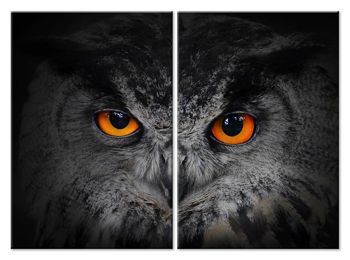 Модульная картина «Хищный взгляд»Животные и птицы<br>Модульная картина на натуральном холсте и деревянном подрамнике. Подвес в комплекте. Трехслойная надежная упаковка. Доставим в любую точку России. Вам осталось только повесить картину на стену!<br>