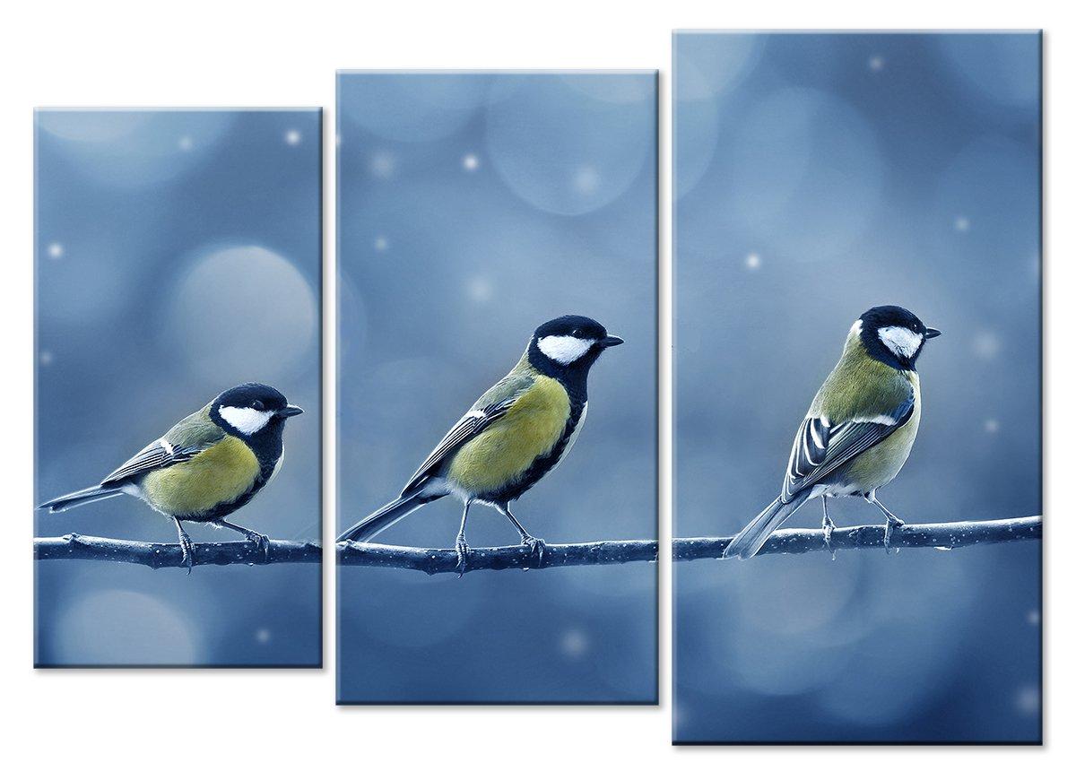 Модульная картина «Три синицы»Животные и птицы<br>Модульная картина на натуральном холсте и деревянном подрамнике. Подвес в комплекте. Трехслойная надежная упаковка. Доставим в любую точку России. Вам осталось только повесить картину на стену!<br>