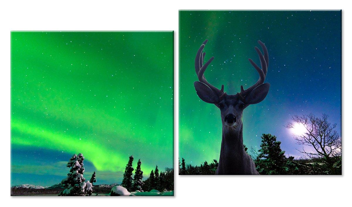 Модульная картина «Северное сияние и олень», 85x50 см, модульная картинаЖивотные и птицы<br>Модульная картина на натуральном холсте и деревянном подрамнике. Подвес в комплекте. Трехслойная надежная упаковка. Доставим в любую точку России. Вам осталось только повесить картину на стену!<br>