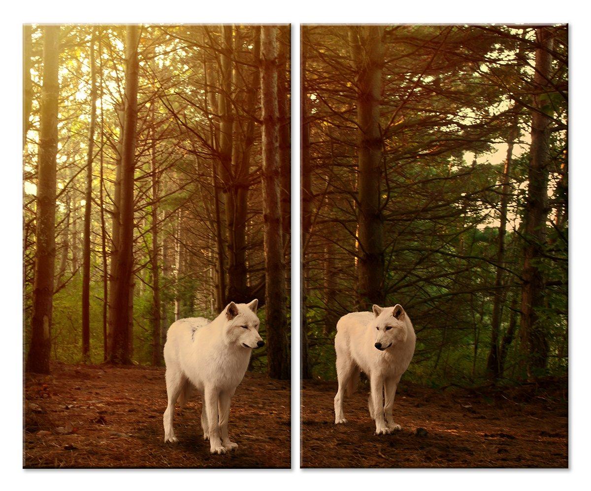 Модульная картина «Белые волки»Животные и птицы<br>Модульная картина на натуральном холсте и деревянном подрамнике. Подвес в комплекте. Трехслойная надежная упаковка. Доставим в любую точку России. Вам осталось только повесить картину на стену!<br>