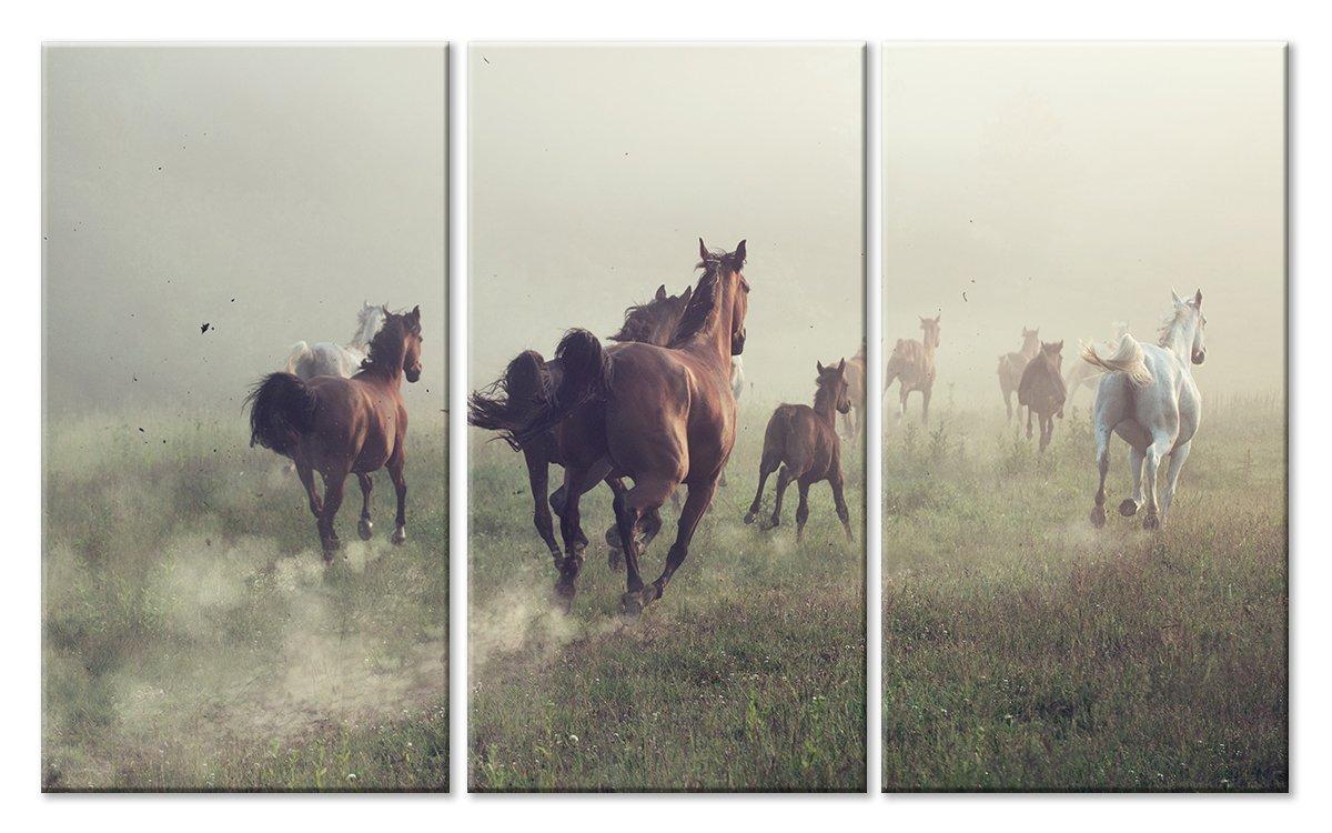 Модульная картина «Туман и лошади»Животные и птицы<br>Модульная картина на натуральном холсте и деревянном подрамнике. Подвес в комплекте. Трехслойная надежная упаковка. Доставим в любую точку России. Вам осталось только повесить картину на стену!<br>