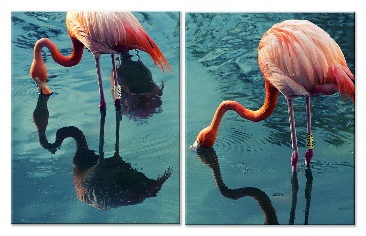 Модульная картина «Отражение фламинго»Животные и птицы<br>Модульная картина на натуральном холсте и деревянном подрамнике. Подвес в комплекте. Трехслойная надежная упаковка. Доставим в любую точку России. Вам осталось только повесить картину на стену!<br>