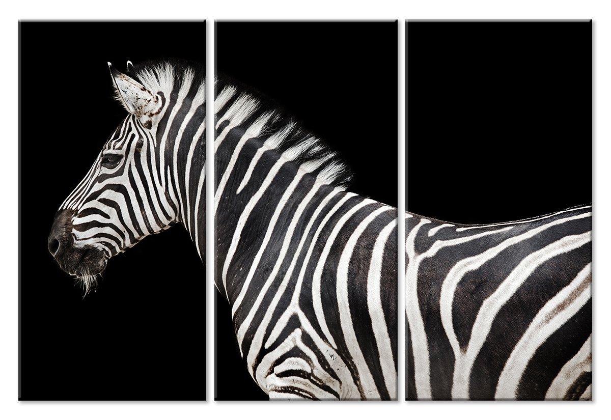 Модульная картина «Зебра на черном»Животные и птицы<br>Модульная картина на натуральном холсте и деревянном подрамнике. Подвес в комплекте. Трехслойная надежная упаковка. Доставим в любую точку России. Вам осталось только повесить картину на стену!<br>