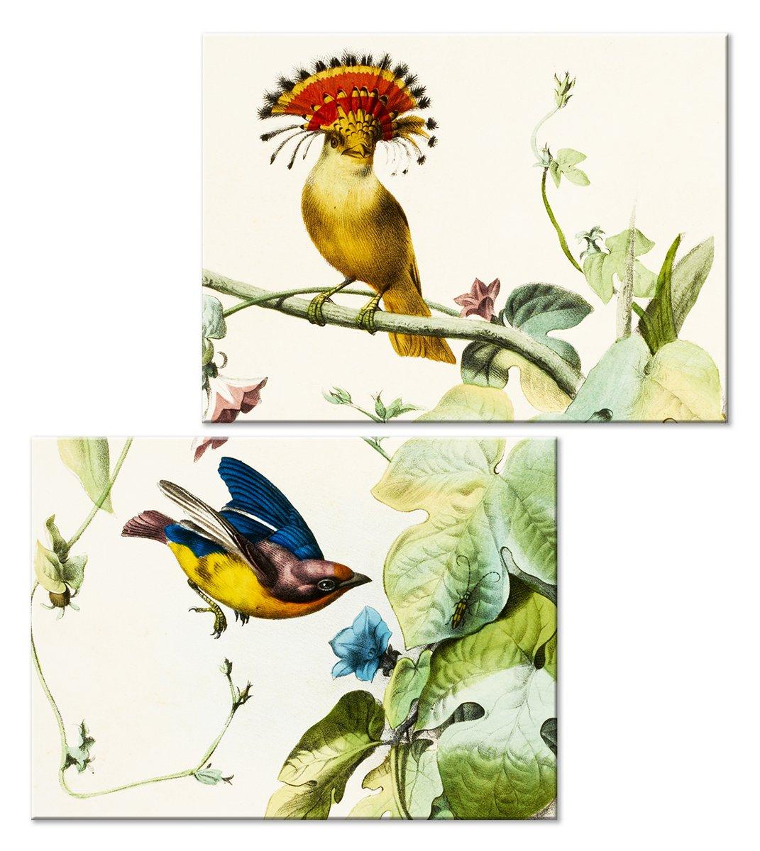 Модульная картина «Волшебные птички»Животные и птицы<br>Модульная картина на натуральном холсте и деревянном подрамнике. Подвес в комплекте. Трехслойная надежная упаковка. Доставим в любую точку России. Вам осталось только повесить картину на стену!<br>