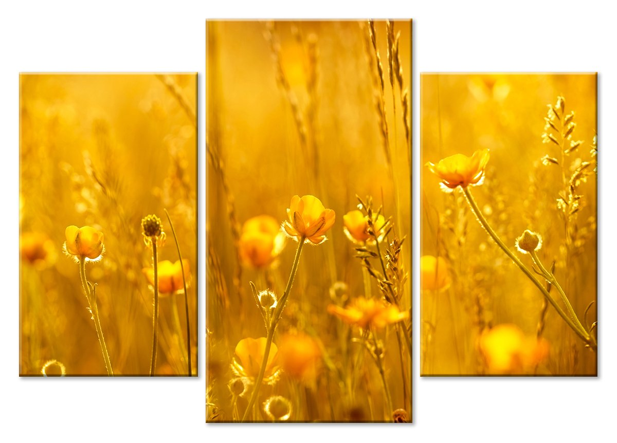 Модульная картина «Золотые лютики», 70x50 см, модульная картинаЦветы<br>Модульная картина на натуральном холсте и деревянном подрамнике. Подвес в комплекте. Трехслойная надежная упаковка. Доставим в любую точку России. Вам осталось только повесить картину на стену!<br>
