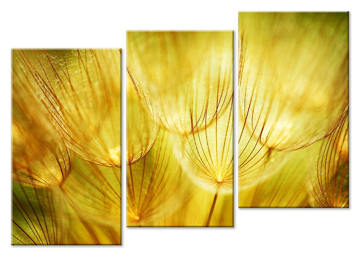 Модульная картина «Легкая материя цвета»Цветы<br>Модульная картина на натуральном холсте и деревянном подрамнике. Подвес в комплекте. Трехслойная надежная упаковка. Доставим в любую точку России. Вам осталось только повесить картину на стену!<br>