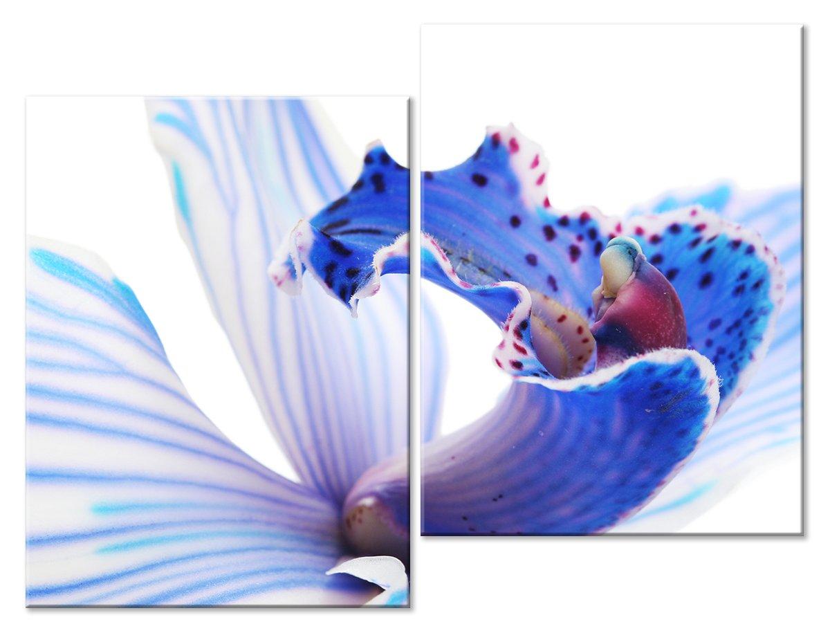 Модульная картина «Лепестки цветка»Цветы<br>Модульная картина на натуральном холсте и деревянном подрамнике. Подвес в комплекте. Трехслойная надежная упаковка. Доставим в любую точку России. Вам осталось только повесить картину на стену!<br>