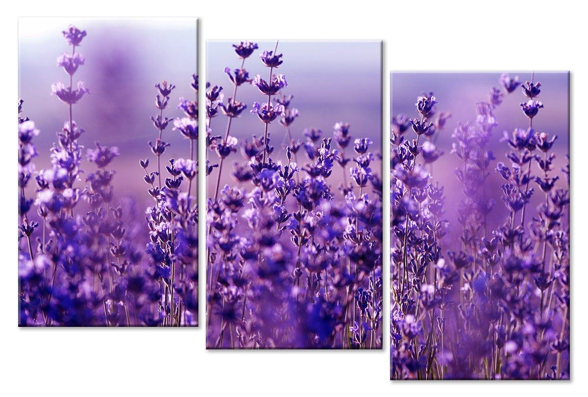 Модульная картина «Фиолетовый луг»Цветы<br>Модульная картина на натуральном холсте и деревянном подрамнике. Подвес в комплекте. Трехслойная надежная упаковка. Доставим в любую точку России. Вам осталось только повесить картину на стену!<br>