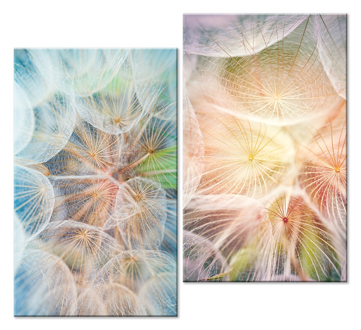 Модульная картина «Волшебные одуванчики»Цветы<br>Модульная картина на натуральном холсте и деревянном подрамнике. Подвес в комплекте. Трехслойная надежная упаковка. Доставим в любую точку России. Вам осталось только повесить картину на стену!<br>