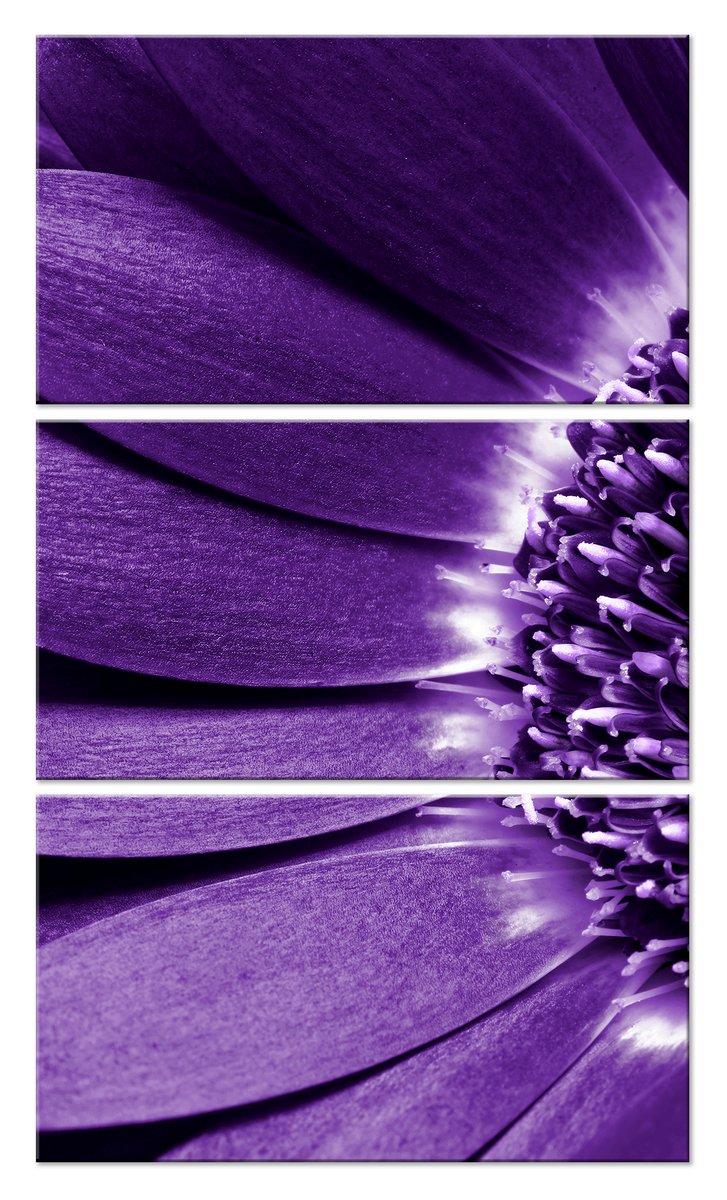 Модульная картина «Фиолетовый свет цветка»Цветы<br>Модульная картина на натуральном холсте и деревянном подрамнике. Подвес в комплекте. Трехслойная надежная упаковка. Доставим в любую точку России. Вам осталось только повесить картину на стену!<br>