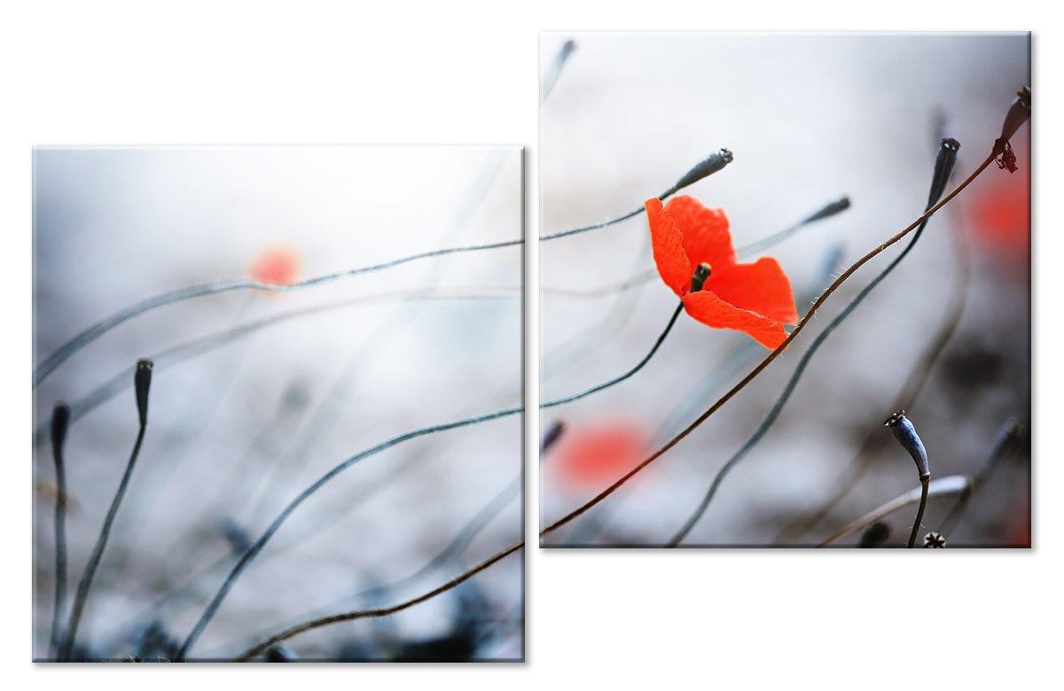 Модульная картина «Мак»Цветы<br>Модульная картина на натуральном холсте и деревянном подрамнике. Подвес в комплекте. Трехслойная надежная упаковка. Доставим в любую точку России. Вам осталось только повесить картину на стену!<br>