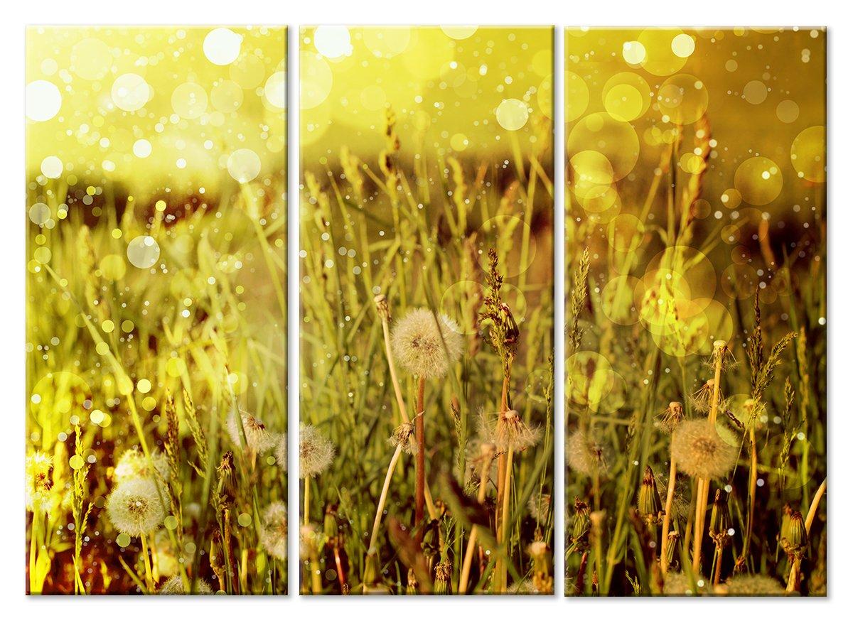 Модульная картина «Все летит»Цветы<br>Модульная картина на натуральном холсте и деревянном подрамнике. Подвес в комплекте. Трехслойная надежная упаковка. Доставим в любую точку России. Вам осталось только повесить картину на стену!<br>