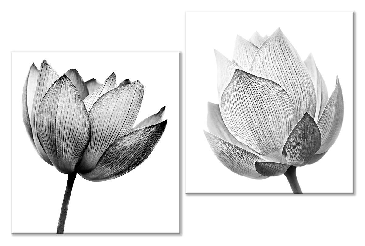 Модульная картина «Черно-белые цветы»Цветы<br>Модульная картина на натуральном холсте и деревянном подрамнике. Подвес в комплекте. Трехслойная надежная упаковка. Доставим в любую точку России. Вам осталось только повесить картину на стену!<br>