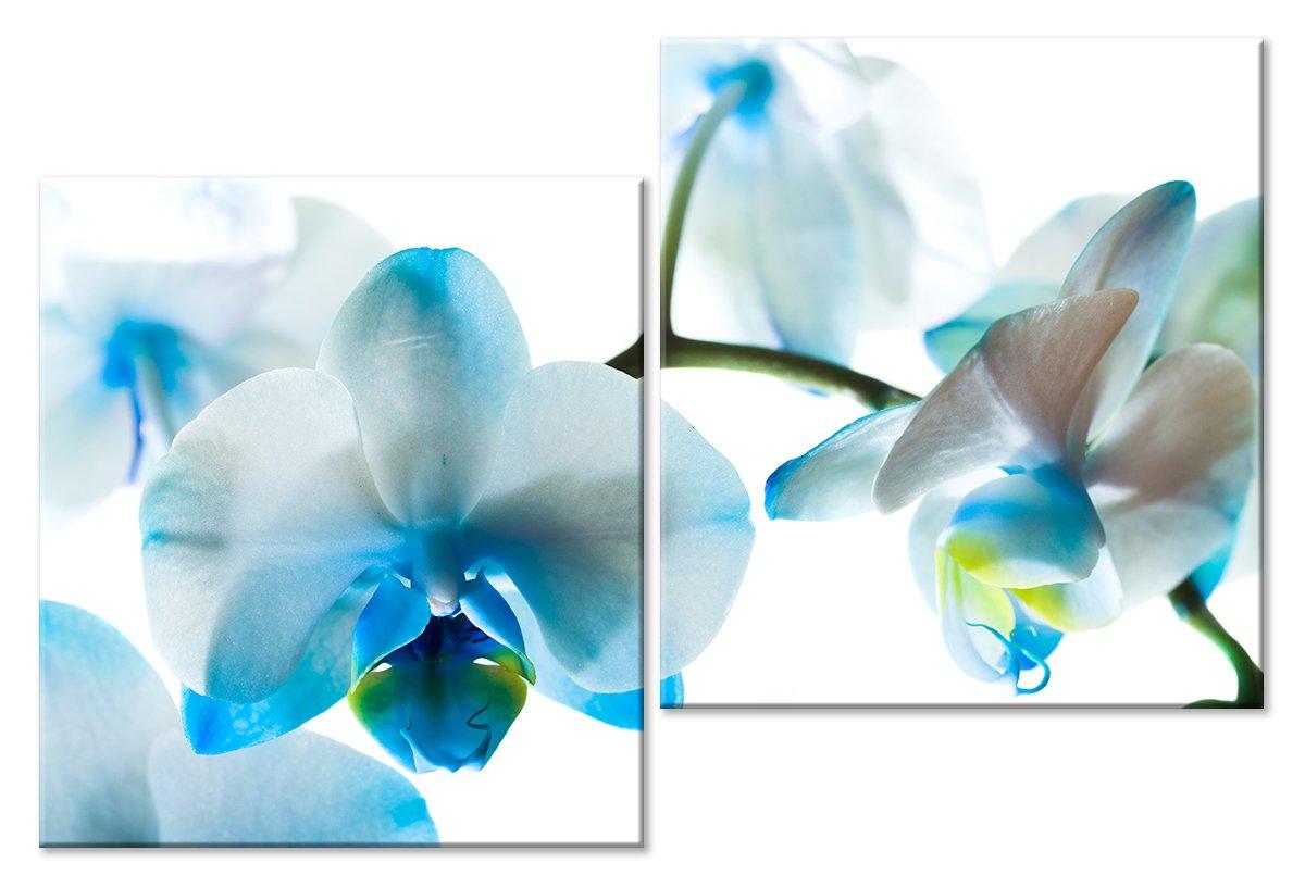 Модульная картина «Нежная ветвь цветка»Цветы<br>Модульная картина на натуральном холсте и деревянном подрамнике. Подвес в комплекте. Трехслойная надежная упаковка. Доставим в любую точку России. Вам осталось только повесить картину на стену!<br>