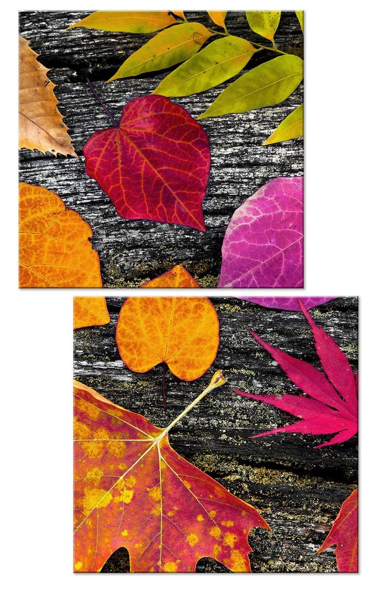 Модульная картина «Краски осени»Цветы<br>Модульная картина на натуральном холсте и деревянном подрамнике. Подвес в комплекте. Трехслойная надежная упаковка. Доставим в любую точку России. Вам осталось только повесить картину на стену!<br>
