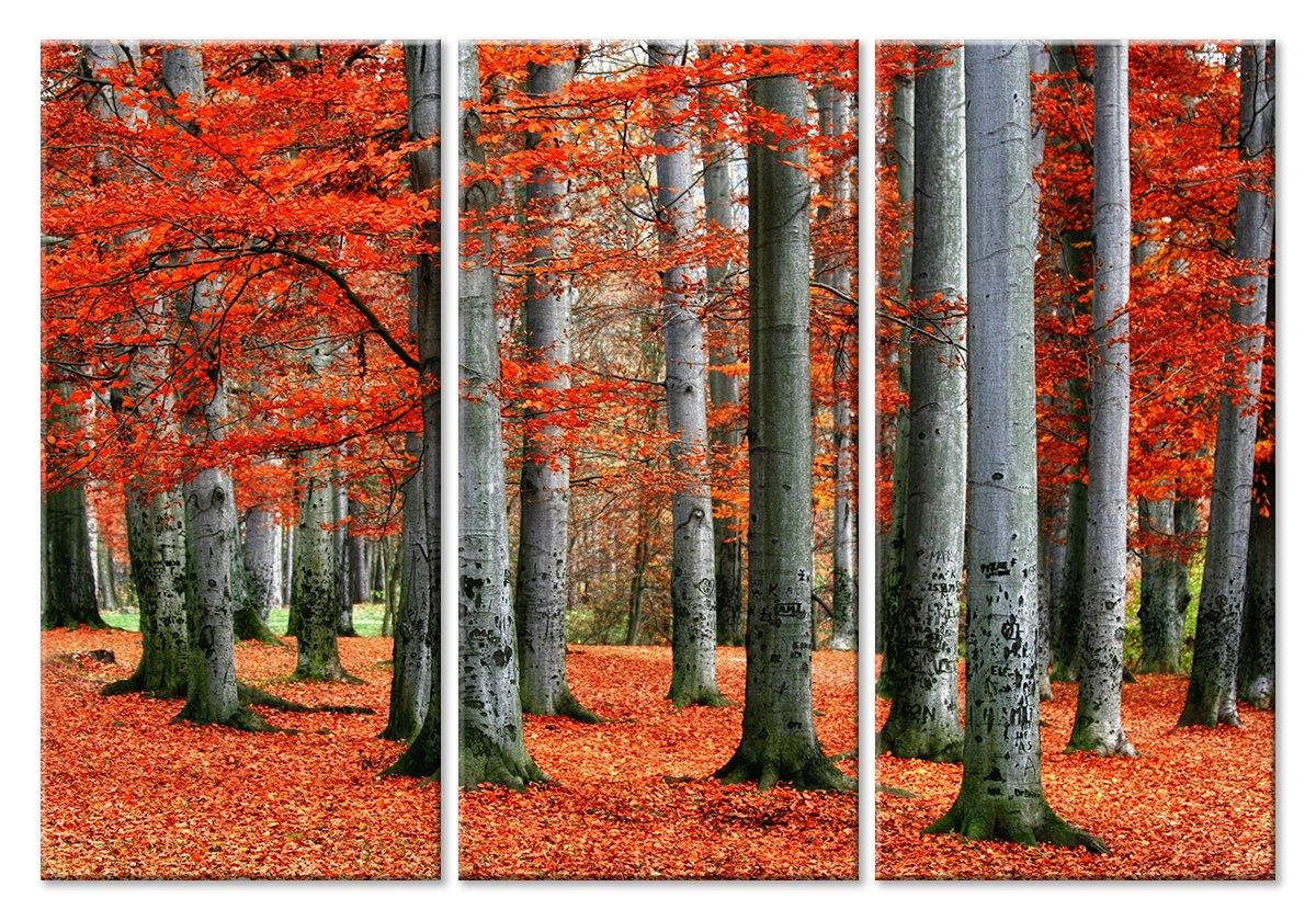 Модульная картина «Осенние деревья»Природа<br>Модульная картина на натуральном холсте и деревянном подрамнике. Подвес в комплекте. Трехслойная надежная упаковка. Доставим в любую точку России. Вам осталось только повесить картину на стену!<br>