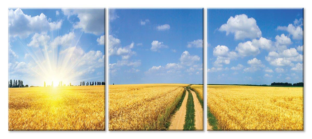 Модульная картина «Золотое поле»Природа<br>Модульная картина на натуральном холсте и деревянном подрамнике. Подвес в комплекте. Трехслойная надежная упаковка. Доставим в любую точку России. Вам осталось только повесить картину на стену!<br>