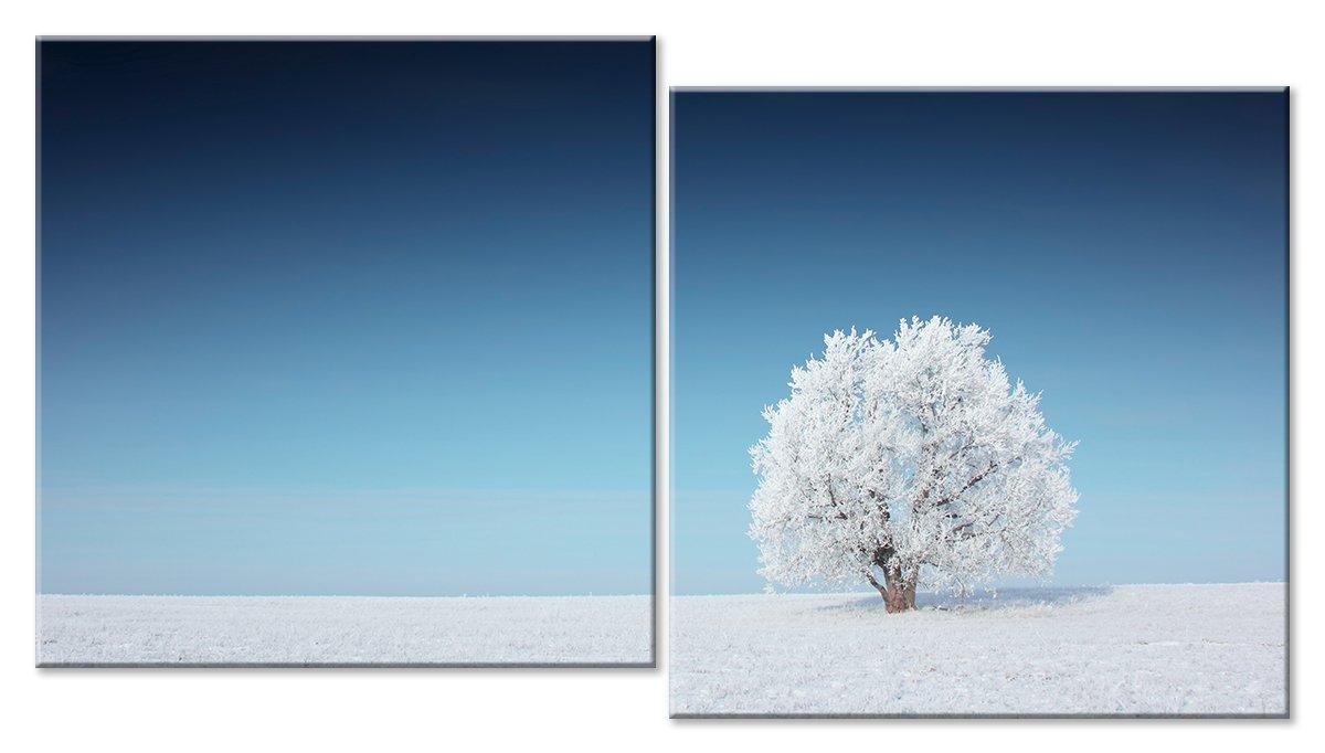 Модульная картина «Дерево в снежной долине»Природа<br>Модульная картина на натуральном холсте и деревянном подрамнике. Подвес в комплекте. Трехслойная надежная упаковка. Доставим в любую точку России. Вам осталось только повесить картину на стену!<br>