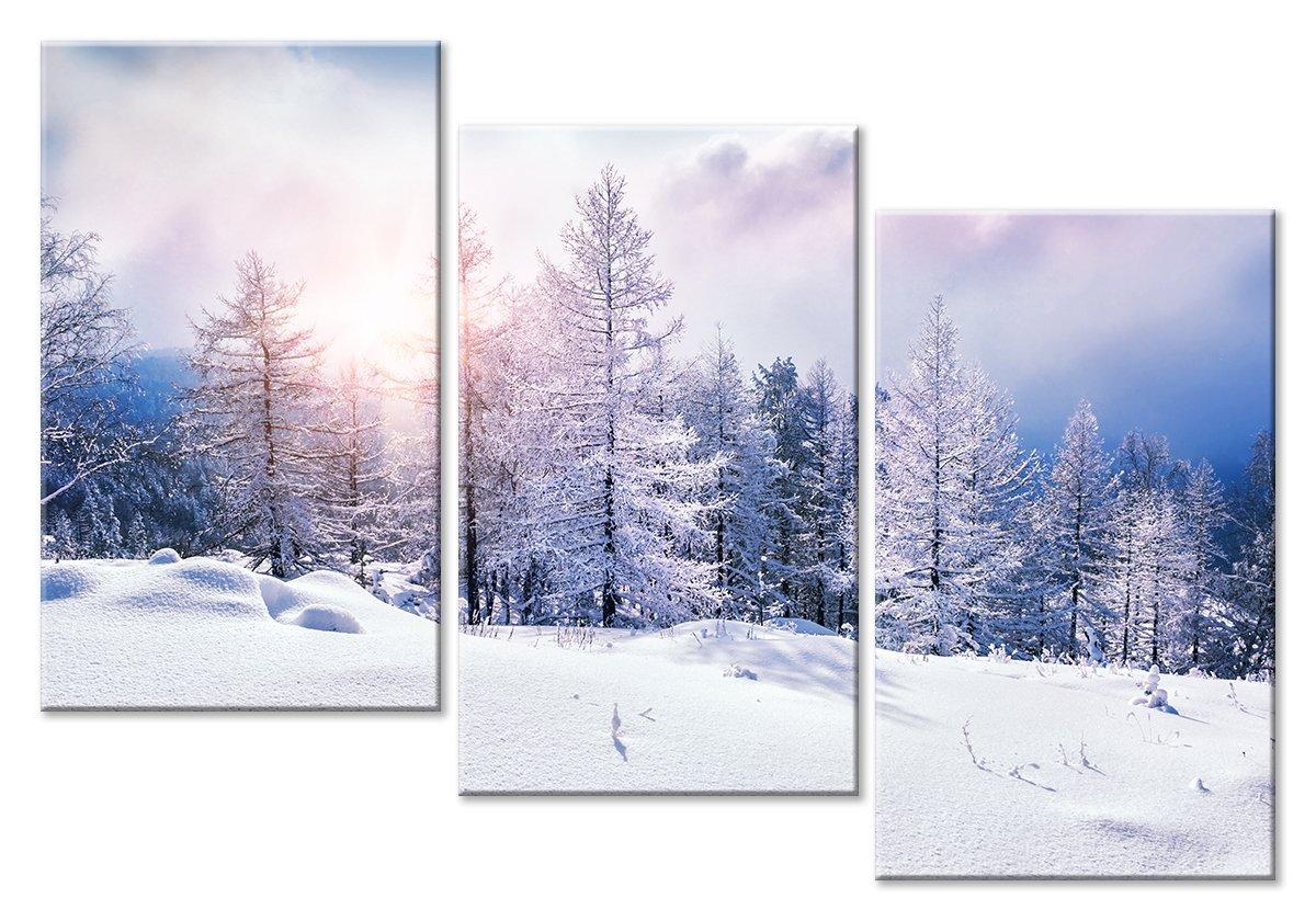 Модульная картина «Зимний пейзаж»Природа<br>Модульная картина на натуральном холсте и деревянном подрамнике. Подвес в комплекте. Трехслойная надежная упаковка. Доставим в любую точку России. Вам осталось только повесить картину на стену!<br>