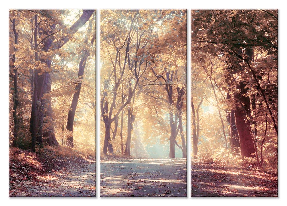 Модульная картина «Дорога в листопад»Природа<br>Модульная картина на натуральном холсте и деревянном подрамнике. Подвес в комплекте. Трехслойная надежная упаковка. Доставим в любую точку России. Вам осталось только повесить картину на стену!<br>