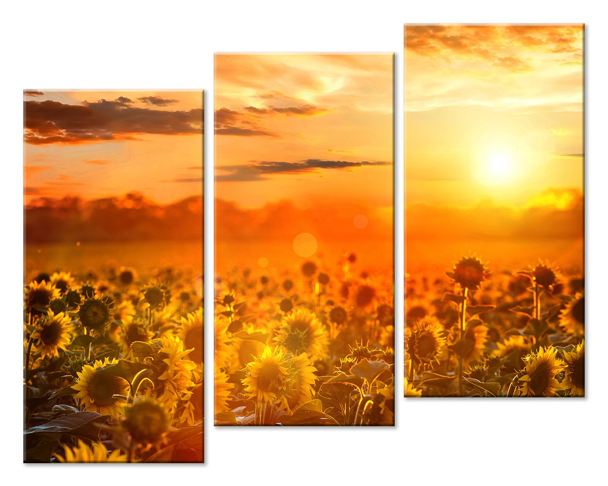 Модульная картина «Солнечный вечер»Природа<br>Модульная картина на натуральном холсте и деревянном подрамнике. Подвес в комплекте. Трехслойная надежная упаковка. Доставим в любую точку России. Вам осталось только повесить картину на стену!<br>