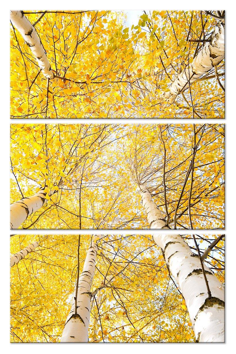 Модульная картина «Белое, желтое и черное»Природа<br>Модульная картина на натуральном холсте и деревянном подрамнике. Подвес в комплекте. Трехслойная надежная упаковка. Доставим в любую точку России. Вам осталось только повесить картину на стену!<br>