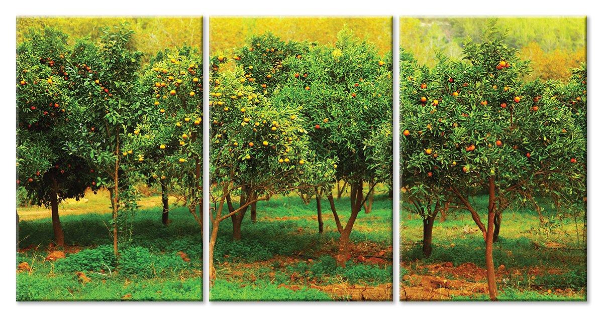 Модульная картина «Мандариновые деревья»Природа<br>Модульная картина на натуральном холсте и деревянном подрамнике. Подвес в комплекте. Трехслойная надежная упаковка. Доставим в любую точку России. Вам осталось только повесить картину на стену!<br>