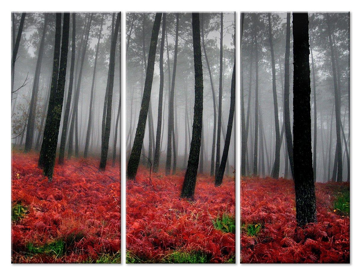 Модульная картина «По красному покрову»Природа<br>Модульная картина на натуральном холсте и деревянном подрамнике. Подвес в комплекте. Трехслойная надежная упаковка. Доставим в любую точку России. Вам осталось только повесить картину на стену!<br>