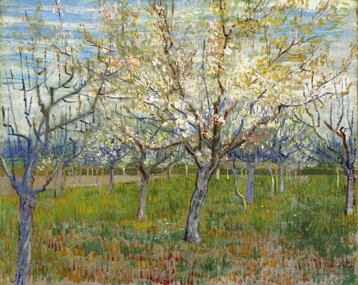 Пленэр, картина Ван Гог Винсент «Цветущие абрикосовые деревья»Пленэр<br>Репродукция на холсте или бумаге. Любого нужного вам размера. В раме или без. Подвес в комплекте. Трехслойная надежная упаковка. Доставим в любую точку России. Вам осталось только повесить картину на стену!<br>