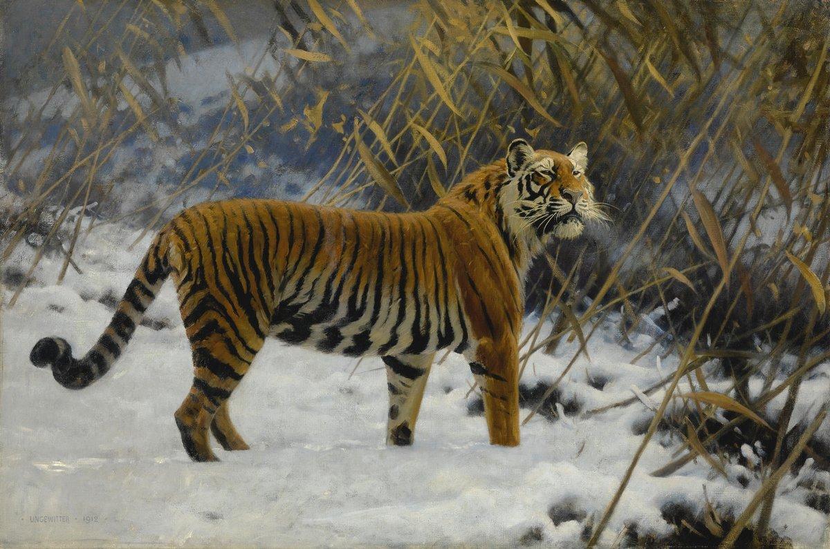 Животные, картина Унгевиттер Хуго «Тигр»Животные<br>Репродукция на холсте или бумаге. Любого нужного вам размера. В раме или без. Подвес в комплекте. Трехслойная надежная упаковка. Доставим в любую точку России. Вам осталось только повесить картину на стену!<br>