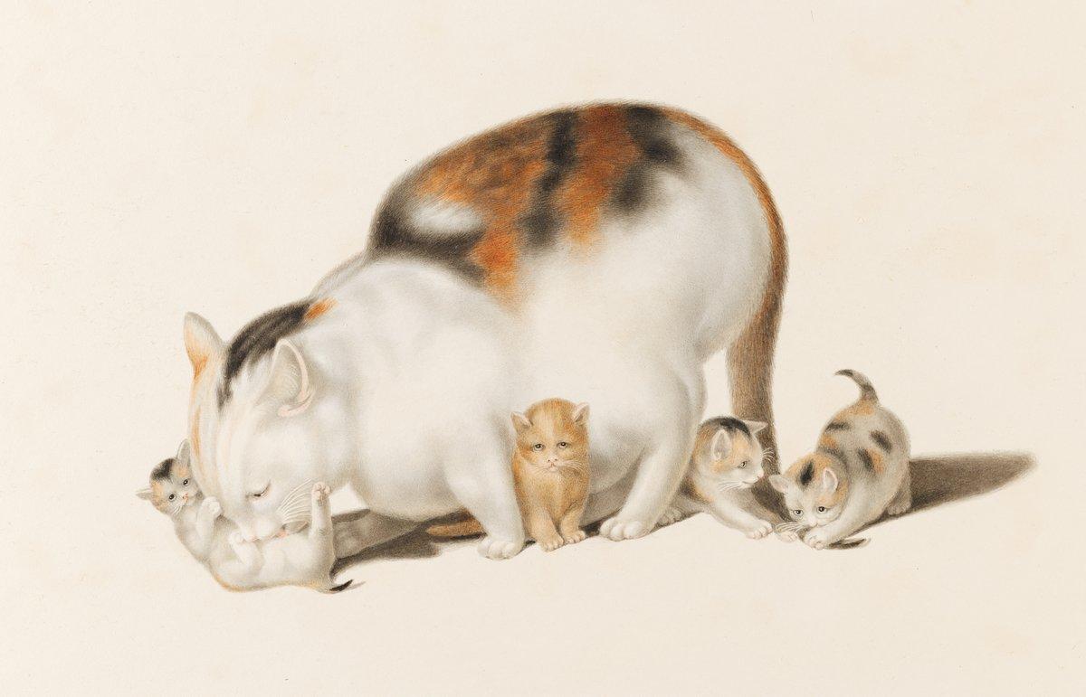 Искусство, картина Минд Годфрид «Кошка с четырьмя котятами», 31x20 см, на бумагеКошки<br>Постер на холсте или бумаге. Любого нужного вам размера. В раме или без. Подвес в комплекте. Трехслойная надежная упаковка. Доставим в любую точку России. Вам осталось только повесить картину на стену!<br>