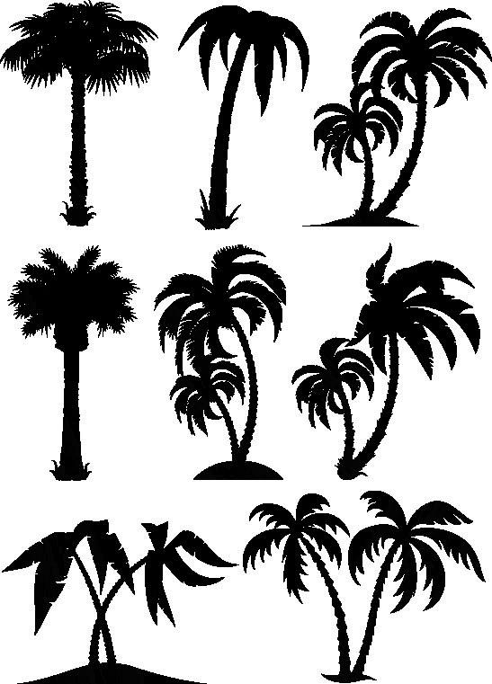 Наклейка «Ассорти из пальм»Деревья<br><br>
