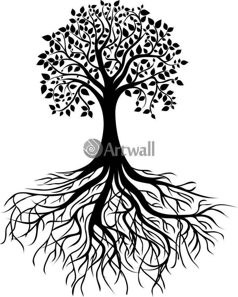 Наклейка «Разветвлённые корни»