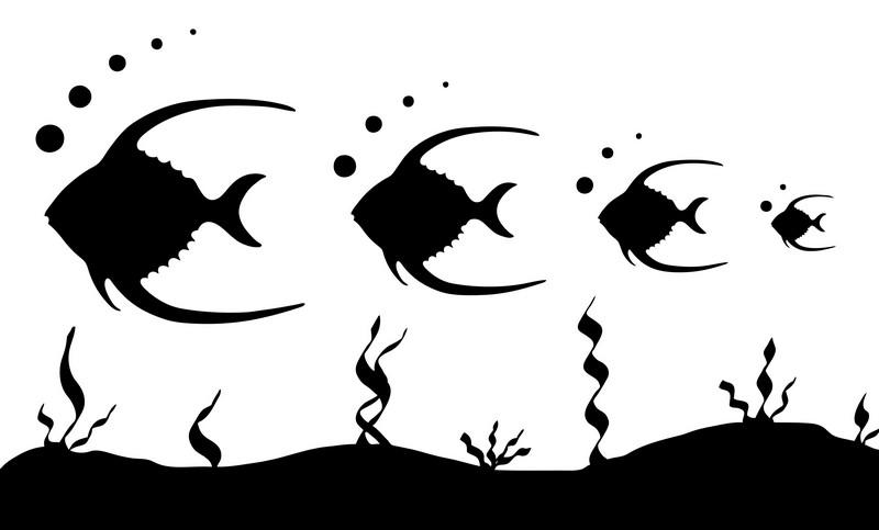 Наклейка «Четыре рыбкиДля ванны, туалета<br><br>