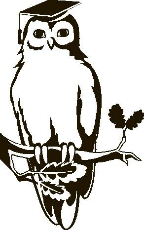 Наклейка «Мудрая сова»