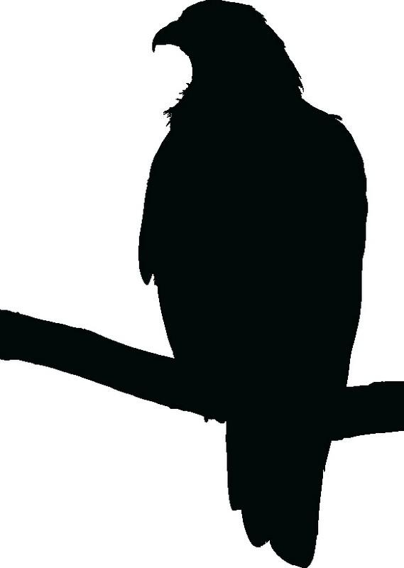 Наклейка «Сокол»Животные и птицы<br><br>